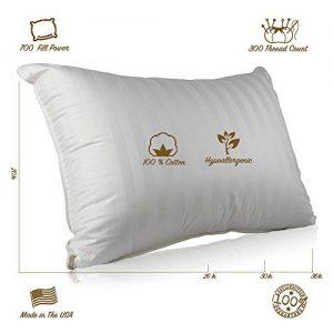 Continental Bedding SP100-Q Superior Pillows