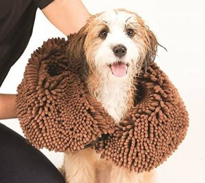 dog shammy towel