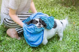 Tuff Pupper Large Dog Shammy Towel for both large and small dog