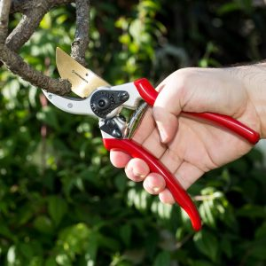 best garden shears reviews