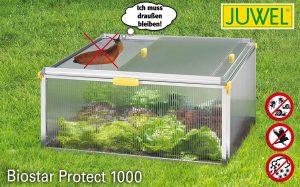 cold frame greenhouse kits