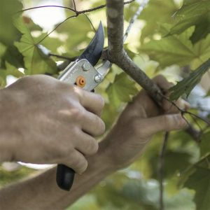 best pruning loppers