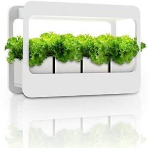 indoor herb garden kit with grow light