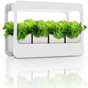 indoor herb garden kit with grow light