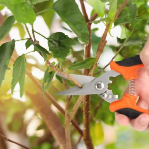 pruning shears with rotating handle