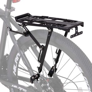 schwinn rear bike rack