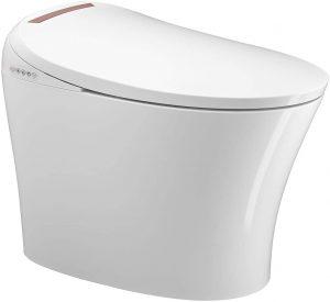 Household Electric Multifunctional Toilet