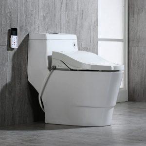 WOODBRIDGE T-0008 Luxury Bidet Toilet On Display
