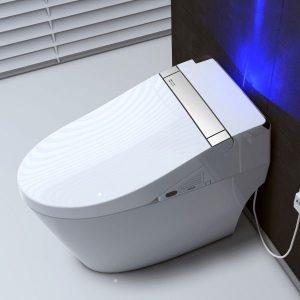WOODBRIDGE Smart Toilet Seat